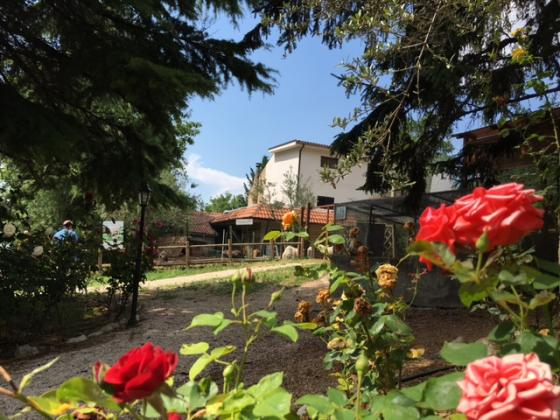 Property in Abruzzo - ref.: AGRITURISMO PETTORAN